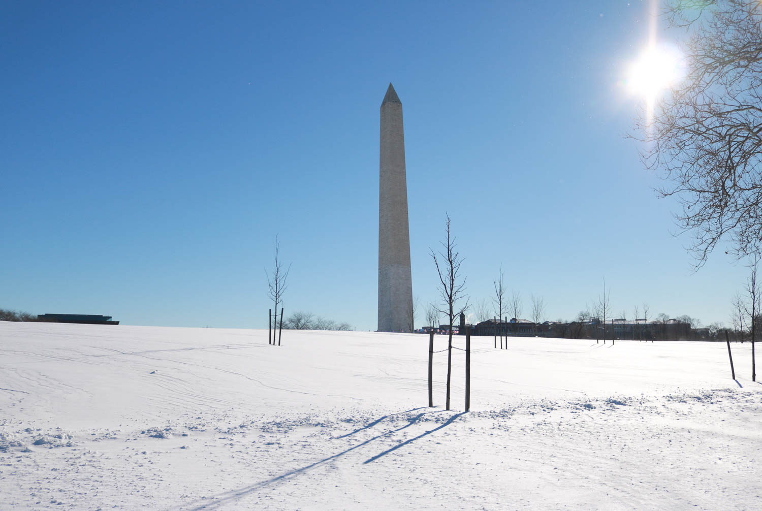 National Mall Blizzard 2016