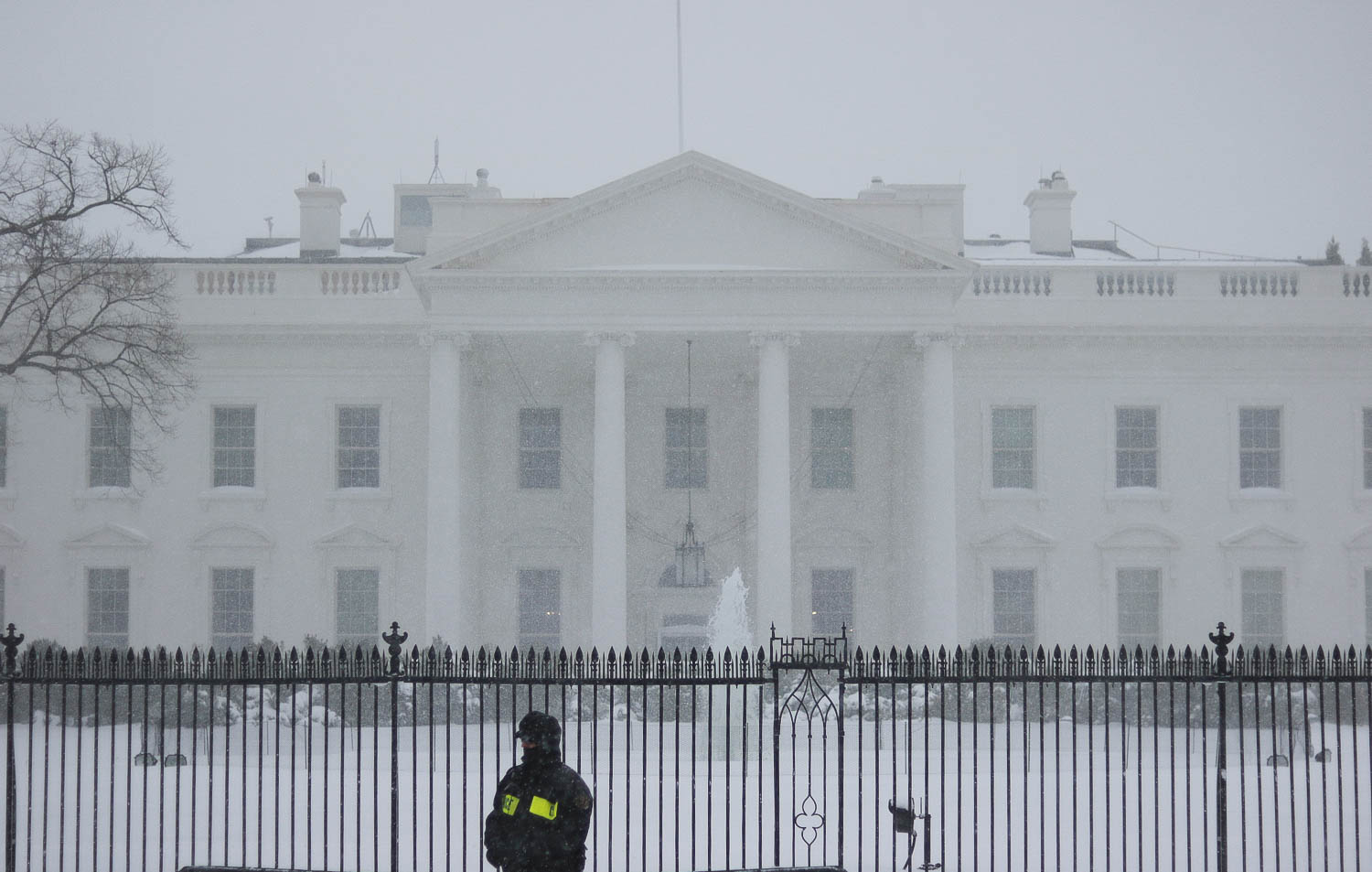 The White House Blizzard 2016