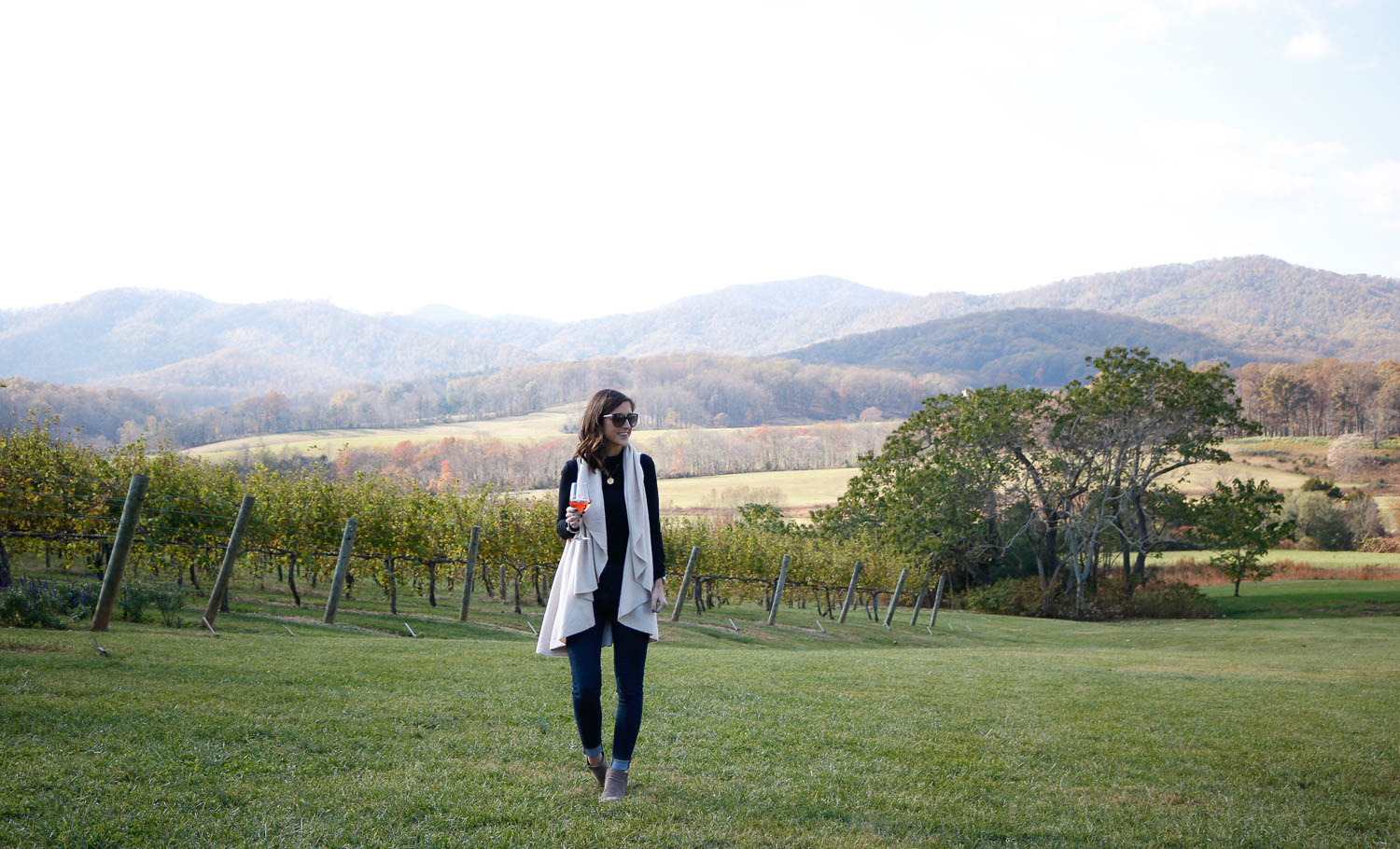 Pippin Hill Farm and Vineyard | Charlottesville, Virginia Weekend Guide | Cobalt Chronicles