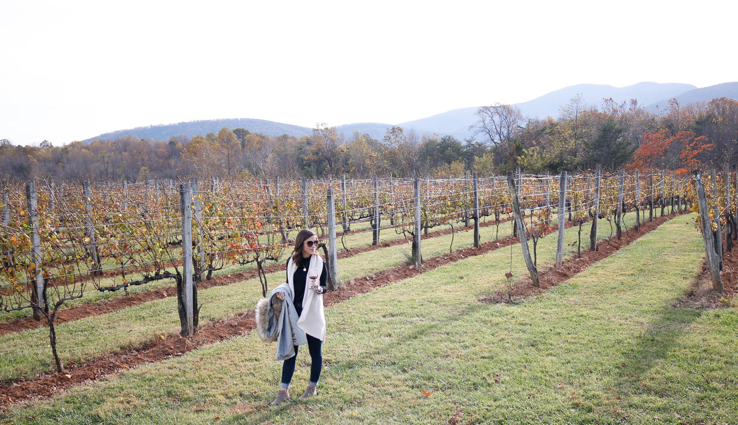 Afton Mountain Vineyards | Charlottesville, Virginia Weekend Guide | Cobalt Chronicles