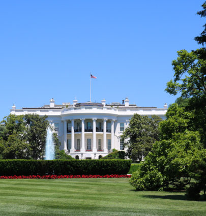 Weekend Guide for First Time Visiting Washington, D.C. | Cobalt Chronicles | Washington, DC | Travel Blogger