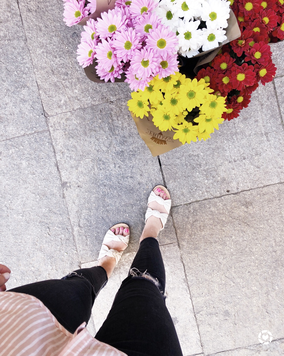 Splendid Sandals | Week In Review | Cobalt Chronicles | Washington, DC | Style Blogger