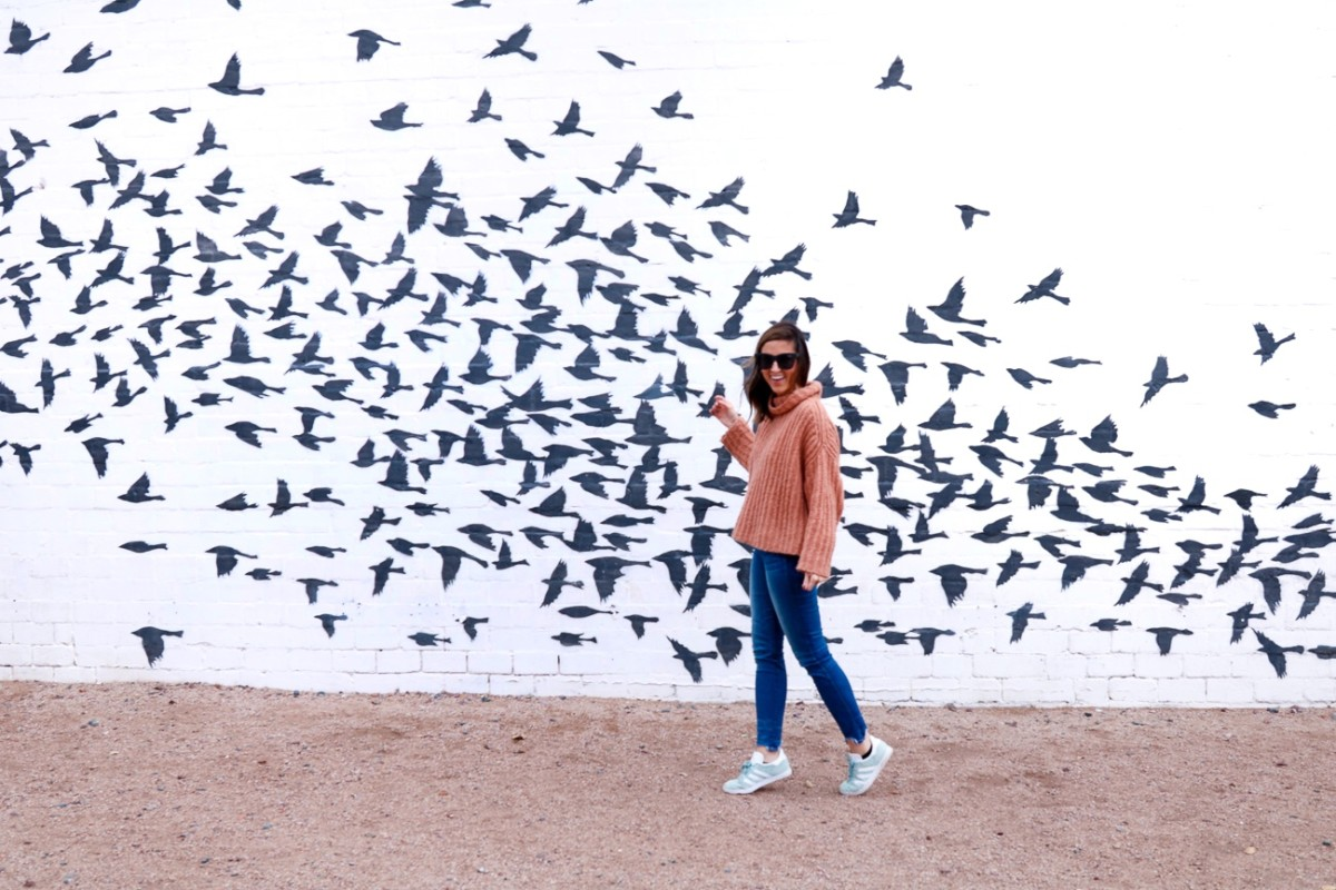 Murals in Phoenix, Arizona | Cobalt Chronicles | Houston Travel Blogger