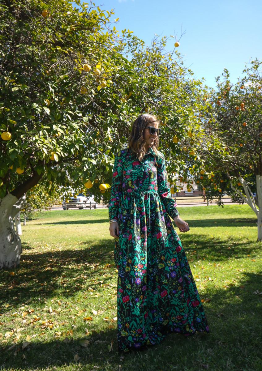 6 Fun Things to Do in Mesa, AZ | Cobalt Chronicles | Houston Travel Blogger