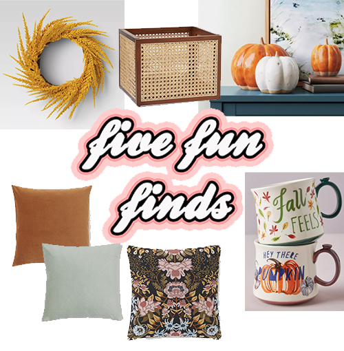 Five Fun Finds - Fall Edition